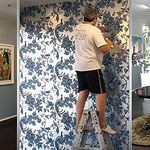 Professional Wallpaper Hanging Installation Quote Adelaide